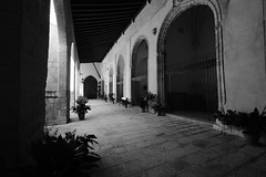 XE3F7258 - Catedral de la Natividad de Nuestra Señora, Baeza (Jaén) (Enrique R G) Tags: catedraldelanatividaddenuestraseñora catedral cathedral claustro cloister baeza jaen jaén andalucia andalucía andalusia españa spain fujifilmxe3 fujixe3 fujinon1024
