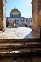 Tempelberg Jerusalem / Felsendom (ippnw Deutschland) Tags: israel palästina palestine bethlehem palestinian palästinenser frieden nahost begegnung reise ärzte jerusalem tempelberg felsendom