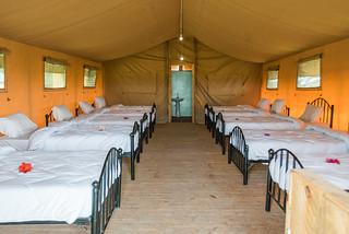 Bell Tent 14 pax