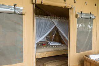 Safari Luxury Tent (2 pax) | Africa Safari Lake Manyara