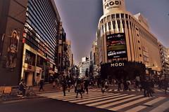 Tokyo is screaming for love 3 (chikaraamano) Tags: tokyo afternoon shibuyaward buildings peoples largestcities bigtown winter sky outdoor capitalofjapan