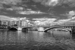 Puente de San Telmo (Sevilla) (ricardocarmonafdez) Tags: sevilla guadalquivir rio river puente bridge santelmo monocromo monochrome bn bw blackandwhite nikon d850 cityscape ciudad city cielo sky nubes clouds