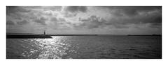 (Oeil de chat) Tags: nb bw monochrome 35mm film pellicule argentique hasselblad xpan panoramique kodak trix xtol mer brest contrejour bretagne horizon