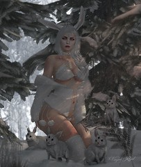 Daydream (Vanjah Rajal) Tags: sl secondlife maitreya catwa snow bunny winter fantasy cosplay bento