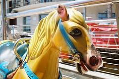 Una gita ad Alassio (sirio174 (anche su Lomography)) Tags: alassio mare sea primavera spring liguria italia italy cavallo horse canonae1 lomographycn100