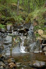 Bukovska River (Nenad Andonovski) Tags: srbija srbijauslikama outdoors nature naturephotography maljen podbukovlje river stones rocks