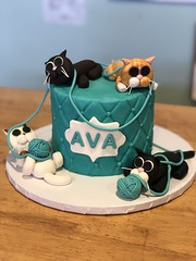 IMG_7983 (backhomebakerytx) Tags: texas back home bakery backhomebakery texasbakery cake cat kitty birthday quilt cats