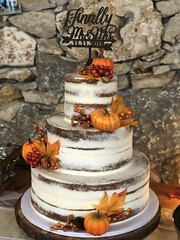 IMG_7789 (backhomebakerytx) Tags: texas back home bakery backhomebakery texasbakery cake wedding bride brides texasbride texaswedding fall three tier naked