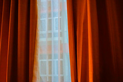 343/365: filtered aperture (Fille.de.Lumière) Tags: window windows windowshot outmywindow outthewindow gold warm warmphotos curtains 365 project365 curtaintwitcher noseyneighbour insideoutside outsideinside