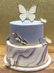 IMG_7772 (backhomebakerytx) Tags: texas back home bakery backhomebakery texasbakery cake birthday texasbirthday two tier butterflies marbled