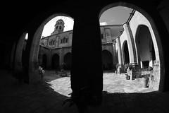 XE3F7254 - Catedral de la Natividad de Nuestra Señora, Baeza (Jaén) (Enrique R G) Tags: catedraldelanatividaddenuestraseñora catedral cathedral claustro cloister baeza jaen jaén andalucia andalucía andalusia españa spain fujifilmxe3 fujixe3 samyang8mm