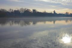 Warnham Local Nature Reserve (Adam Swaine) Tags: waterside water lakes mist nature naturereserve adamswaine sussex england english britain british canon counties countryside beautiful sunlight naturewatcher uk ukcounties greatbritain westsussex