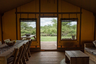 Safari Luxury Accommodation (6 pax) | Africa Safari Lake Manyara