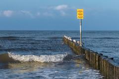 Baltic in November (bożenabożena) Tags: landscape sea baltic seawaves blue poland krajobraz morze bałtyk niebieski falemorskie mewy kołobrzeg gulls