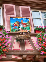 IMG_4759 (pinktigger) Tags: house stork nest decoration balcony pink france alsace architecture colmar