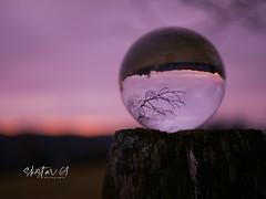 Glaskugel (01) (skistar64) Tags: glaskugel morning morgen dezember december advent winter wintertime daham drausen outdoor pisweg kärnten carinthia