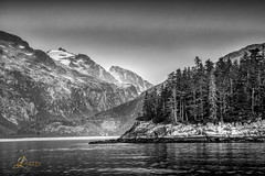 Kenai Fjords National Park, Alaska (JuanJ) Tags: kenaifjordsnationalpark alaska resurrectionbay seward bw blackandwhite nikon d850 lightroom art bokeh lens light landscape happy naturephotography nature people white green red black pink skyportrait location architecture building city square squareformat instagramapp shot awesome supershot beauty cute new flickr amazing photo photograph fav favorite favs picture me explore interestingness friends dof sunset sky flower night tree flowers portrait fineart sun clouds nikonfxshowcase blackwhiteaward