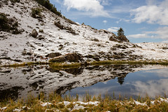 looking glass (gabriela vetsch) Tags: switzerland hasliberg berneroberland käserstatt mountains mountainscape berge alpen alps snow schnee pond tümpel lake spiegelung looking glass canon6d white blue sky clouds autumn fall