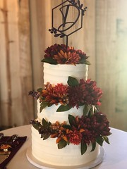 IMG_6499 (backhomebakerytx) Tags: texas back home bakery backhomebakery texasbakery cake thesprings three tier ribbon texture