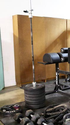 Weight Bar with Rogue Weight Plates ($364.00)