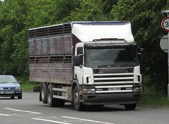 FN04 DHX At Welshpool (Ex Station Couriers) (Joshhowells27) Tags: lorry truck scania 94d scania94d livestock unmarked cattle fn04dhx