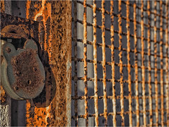 Day 343 Rust (Dominic@Caterham) Tags: padlock rusr grill window sunlight shadows grid