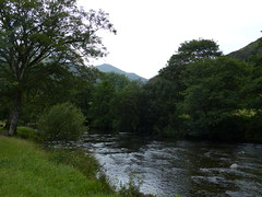 The River Glaslyn (Marit Buelens) Tags: eu uk britain wales cymru snowdonia beddgelert nt nationaltrust walk gelertsgravewalk salmon tree water river stream rivier grass mountain foliage green