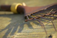 RustyRake (Tony Tooth) Tags: nikon d7100 nikkor 55300mm rust rusty rake iron abstract shadow hallgreen cheshire