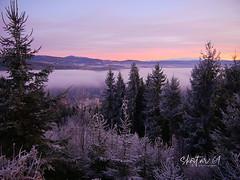 frostiger Morgen (skistar64) Tags: morning morgen nebel fog gurktal gurk kalt cold winter wintertime dezember december daham drausen outdoor natur nature kärnten carinthia