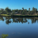 Manatee Park