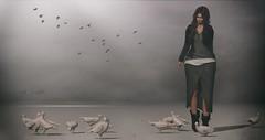♥ (Aimee Cristole) Tags: fameshed giz seorn gizseorn furillen