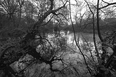 Photo of Sandymoor Pond