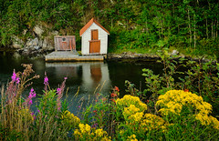 Summer, Karmøy - Norway (Vest der ute) Tags: norway rogaland karmøy xt2 reflections boathouse grass foliage trees water sea flowers latesummer summer