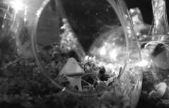 The Groke (Jos Mecklenfeld) Tags: groke moomin monochrome bw garden minoltax700 minoltamdzoom2870mmf3545 minoltamdzoom2870mmf3548 minoltamdzoom2870 minolta rolleirpx400 rollei rpx400 epsonv500 film ishootfilm expiredfilm analog analogue