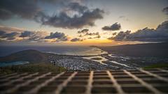 Koko Head Trail (Instagram: MAS Media Labs) Tags: adventure adventureswithyou beach canon hawaii islands kauai lifeofadventure luau masmedia masmedialab masmedialabs masmedialabscom maui mikeshikes pacificocean paradise sunset travelwithme vacation