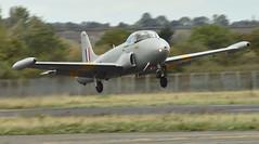 Hunting Jet Provost T.3A XM424 (Fleet flyer) Tags: hunting jet provost t3a xm424 huntingjetprovostt3axm424 huntingjetprovostt3a huntingjetprovost jetprovost northweald