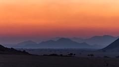 afterglow (Karl-Heinz Bitter) Tags: afrika greenfirelodge namibia africa afterglow evening last light glow sky mountains trees landscape