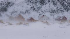 Vent glacial (flo73400) Tags: vent wing neige snow landscape travel paysage house maison