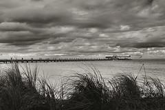 Cloud cover (John Ilko) Tags: 500px annamaria tampabay bay florida stormclouds stormy fishingpier pier x100f fujifilm emotion monochrome monochromemonday