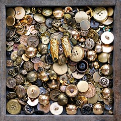 GOLD  & SILVER FRAMED || ECHT GEEN GOUD (Anne-Miek Bibbe) Tags: crazytuesday goldsilver gold silver goud zilver knopen buttons beetles kevers canoneos70d annemiekbibbe bibbe nederland 2019 tabletopphotography boutons argento doro plata deoro