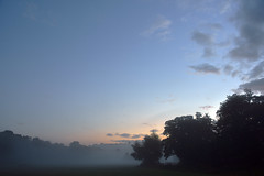 And the mist, she stole my heart  -  (Selected by GETTY IMAGES) (DESPITE STRAIGHT LINES) Tags: dawn firstlight eynsford eynsfordkent kent countryside sunriseovereynsford lullingstone lullingstonevillage eynsfordvillage river riverdarent day cloud landscape nikon d7200 nikond7200 nikon18300mm nikkor18300mmvr paulwilliams despitestraightlines flickr morning am sunrise thegoldenhour goldenhour sunrisephotography lowlightphotography outdoorphotography nature mothernature naturalbeauty beauty trees tree woodlands forest getty gettyimages gettyimagesesp despitestraightlinesatgettyimages paulwilliamsatgettyimages