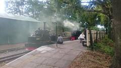 DSC_1381 (steve_j_betts) Tags: steamrailway atmospheric narrowgaugerailway
