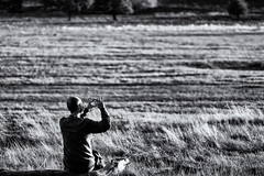 The decisive moment (JMZ Photos) Tags: richmond park m man picture taking smartphone bokeh fuji london fujifilm xf xh1 x 56mm f12 tree sky bw black white outside streetphoto