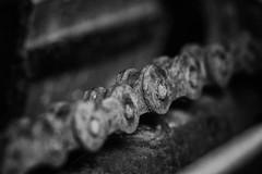 365 - Image 343 - Rusty old bike chain... (Gary Neville) Tags: 365 365images 6th365 photoaday 2019 sony sonya7iii a7iii a7m3 macro macromondays chain garyneville