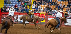 Ride E'm Cowboy! (S2TDD) Tags: horse rider cowboy rodeo fortworth fort worth bucking texas stockyards