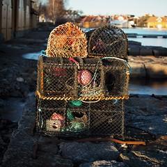 Crab pots (Geir Bakken) Tags: olympus olympusomdem5mark2 mitakon25mmf095 mft mirrorless m43 perfectbeauty