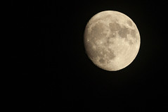 December 9th 2019 - Project 365 (Richard Amor Allan) Tags: moon lune lunar orbit crater satellite night sky project365