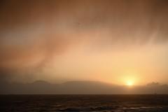 Into the Sun (Brian D 1960) Tags: ocean sea orange sun water coast nikon aberdeen z7 rain winter weather clouds wind sleet atorm