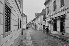 DSCF1255 (andreas.motzkus) Tags: bw flickr urlaub2019 city varazdin country croatia