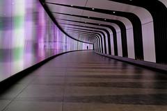 Lone travel (scarbrog) Tags: london stpancras kingscross underground tube tunnel lighttunnel